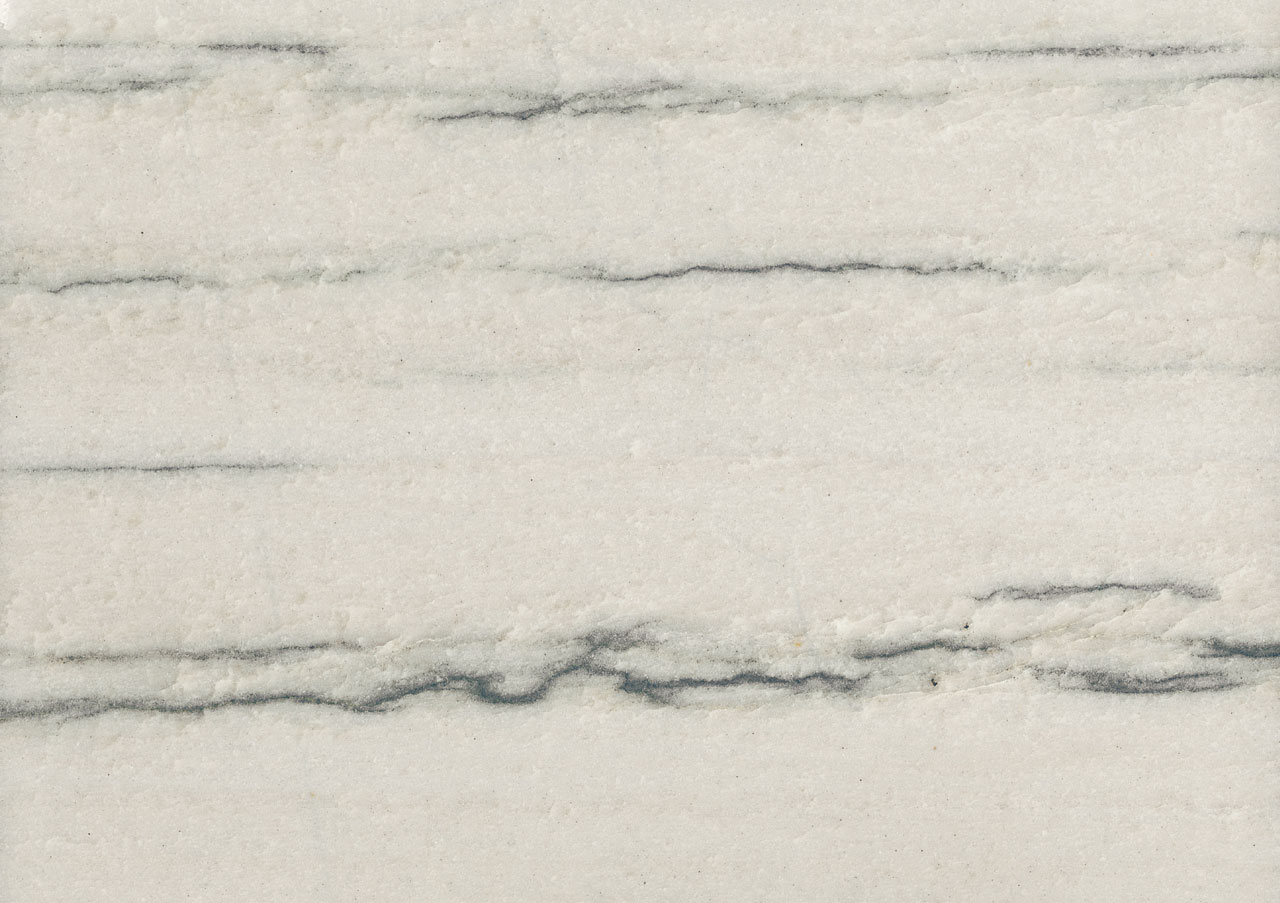 White Macauba