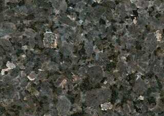 Labrador Silver Pearl